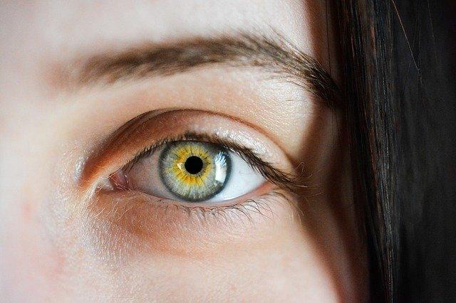 Les options pour la restauration des sourcils